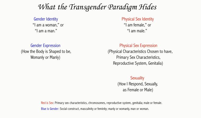 Transgender Paradigm Hides graph
